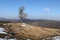 Zvyšky snehu na Skalnatej / 1.1304