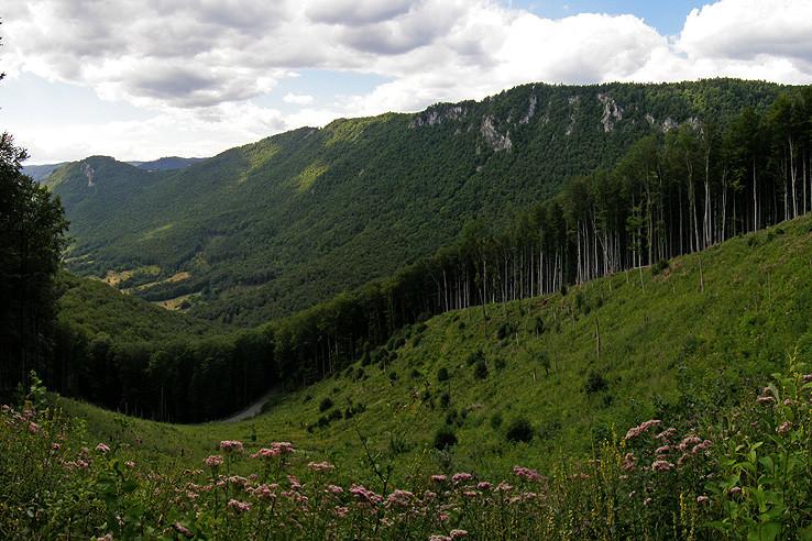 Muráň - Šiance