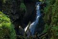 Šero, voda, chládok, divočina.