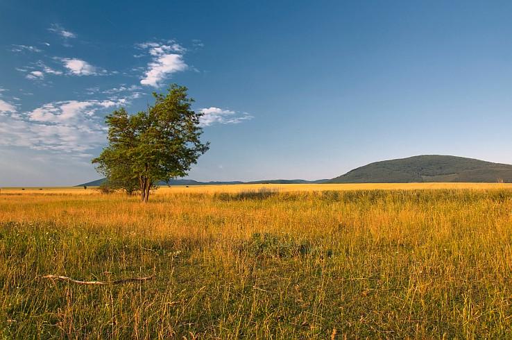 Maďarské safari