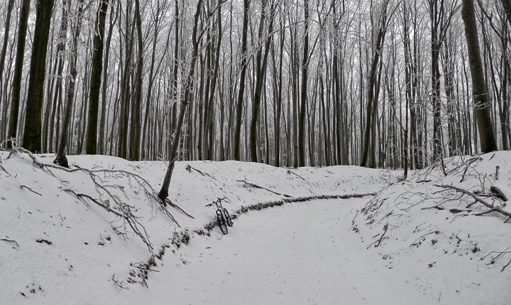 Zima na štreke