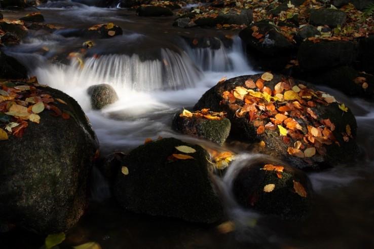 Jesenné prúdy