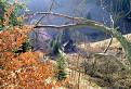 Neskorá jeseň v osade Prašnica