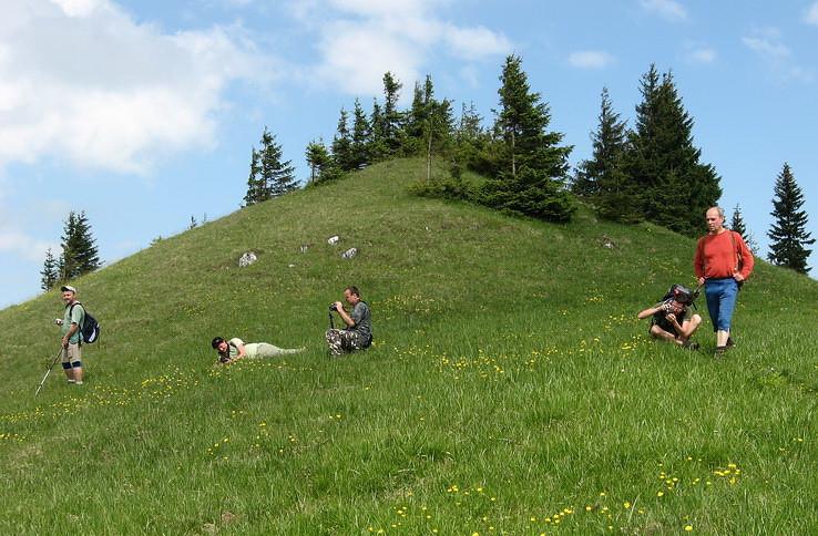 Hiking v akcii