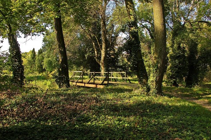 Park v Tomášikove