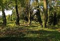Park v Tomášikove / 1.0952