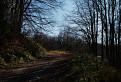 jesennou cestou (2)