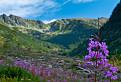 Farebná dolina