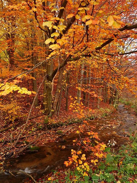 Jeseň v Zádielskej doline