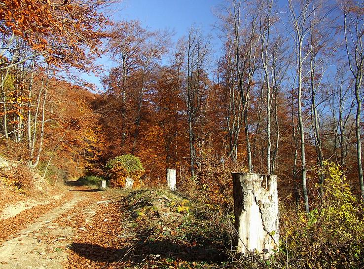 Jeseň v Údolí