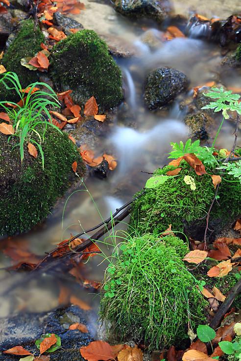 Jeseň a voda