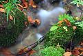 Jeseň a voda / 1.0435