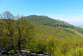 jar na Taricových skalách