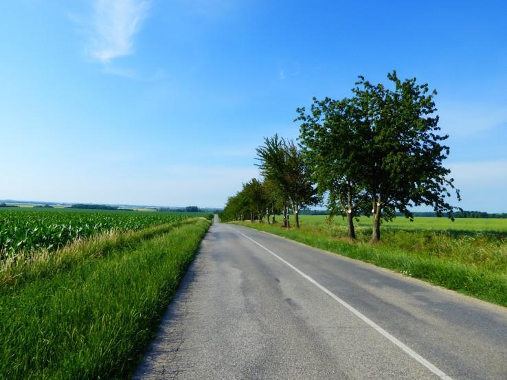 cesta do Trnavy