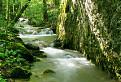 Lúče v potoku