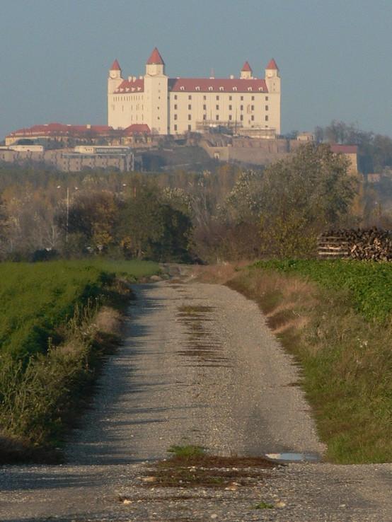 Cestička ku hradu