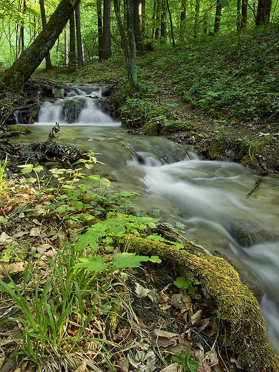 Potok v Prejtianskej doline I.