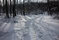 Zima pod Homolou