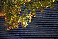 Jesenná šindľová strecha