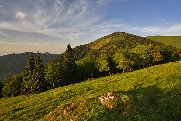 Suchý vrch z Koniarok