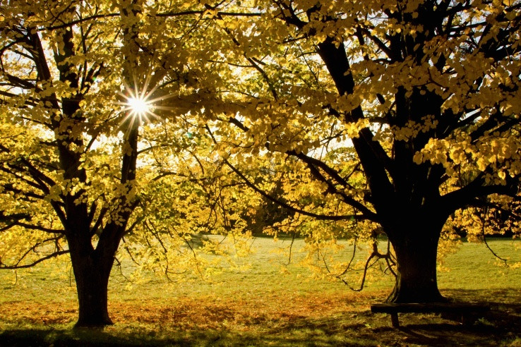 Jesenná energia