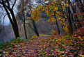 Jasovský rybník / 1.1200