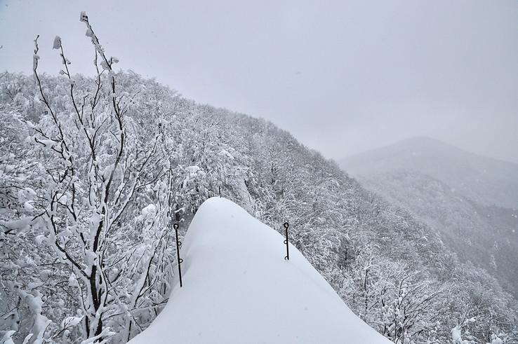 Nečakaná snehová vyhliadka