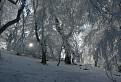 Zimná krajina II.