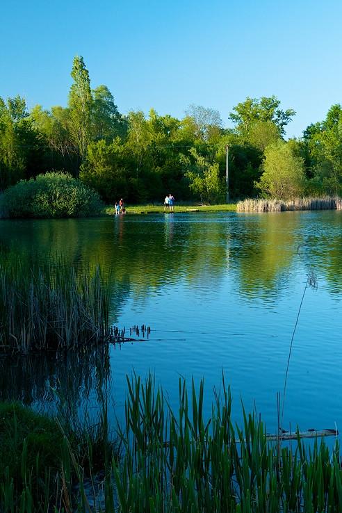 Malý Šúrsky rybník