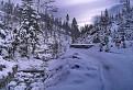 Zimná cesta