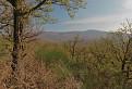 Návšteva Prírodnej rezervácie Solčiansky háj 3