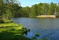 Peterský rybník  na jar.