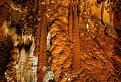 Jaskyňa Rákoczi - bohatá kvapľová výzdoba
