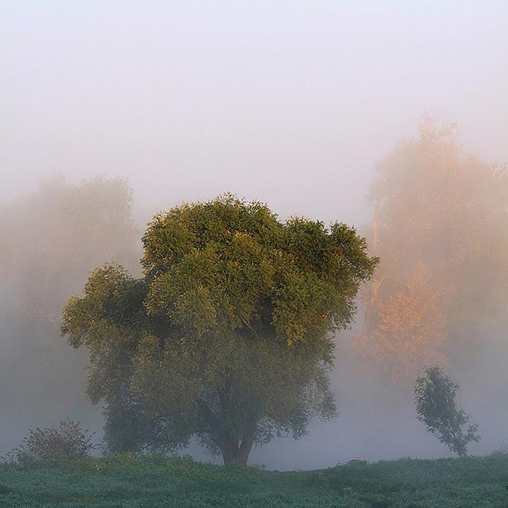 Jeseň pri Morave I