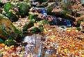 Jeseň na Zochovej chate