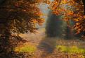 Jesenná nálada