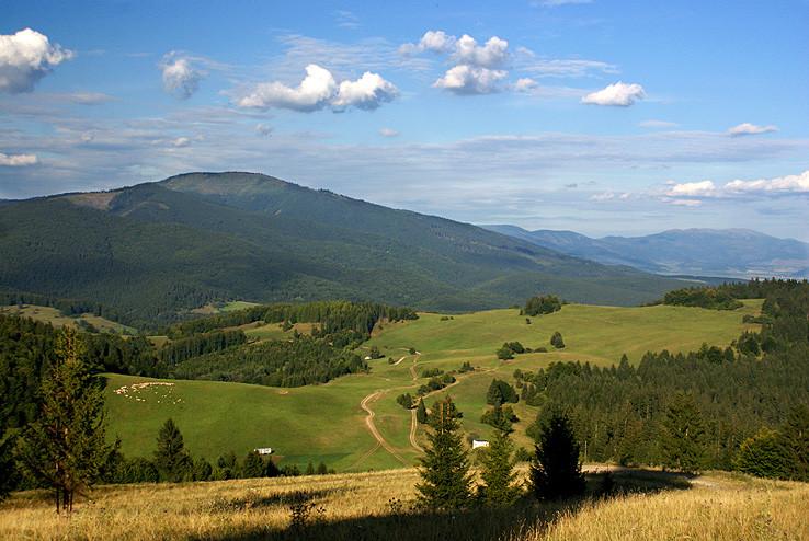 Idylka s ovečkami pod Tatrami